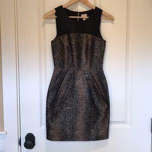 H&M black/gold animal print tulip dress, size 2